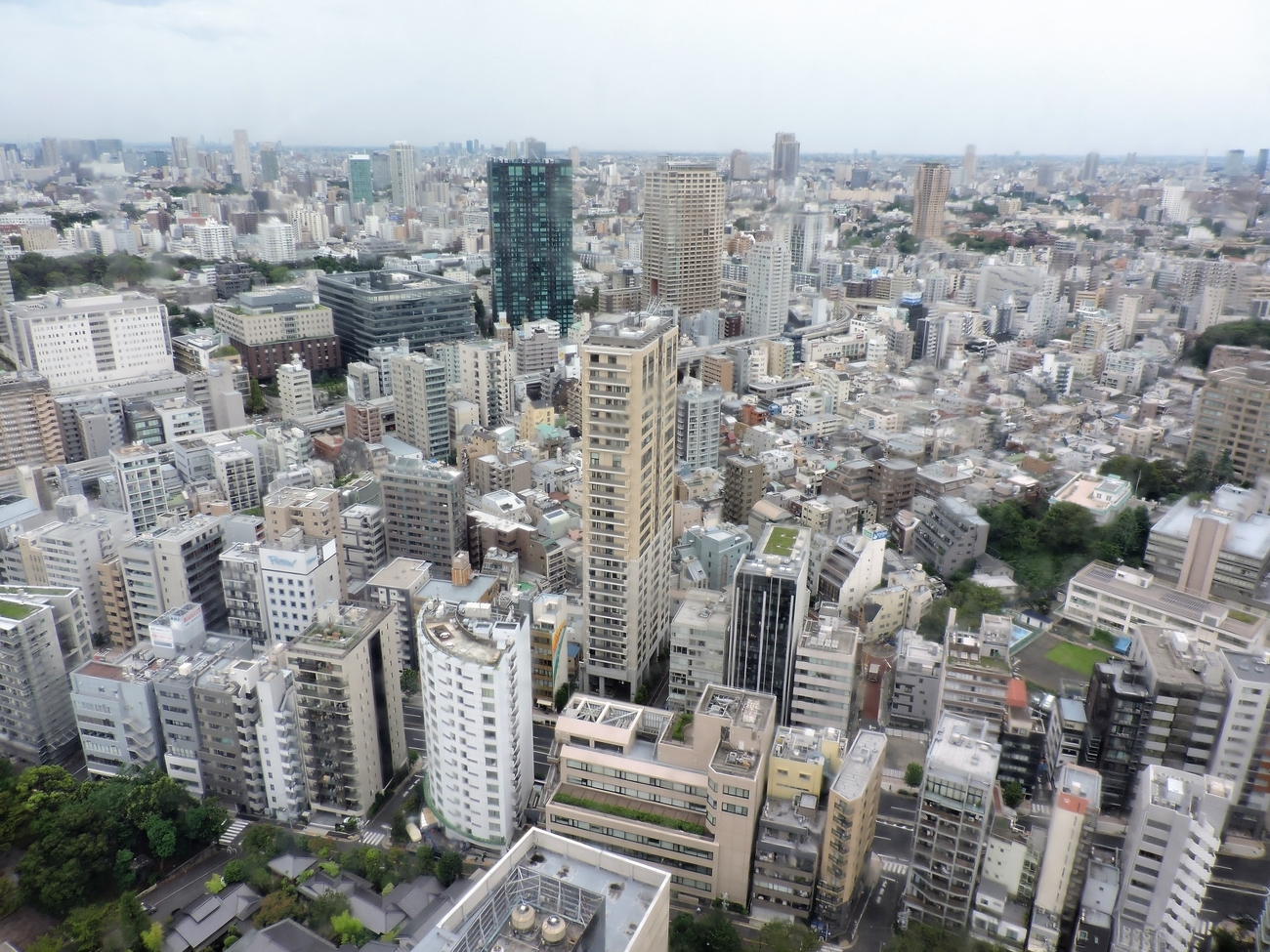 view of Tokyo from the top