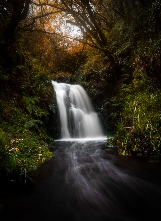Autumn is coming by seanorphoto - Social Exposure Photo Contest Vol 17