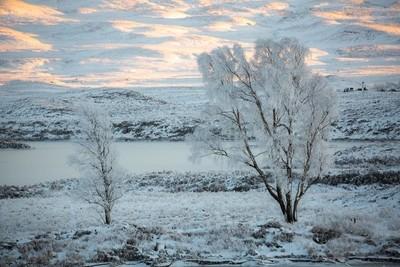 Rime Frost on Rannoch Moor