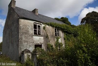 Corscadden House-2342