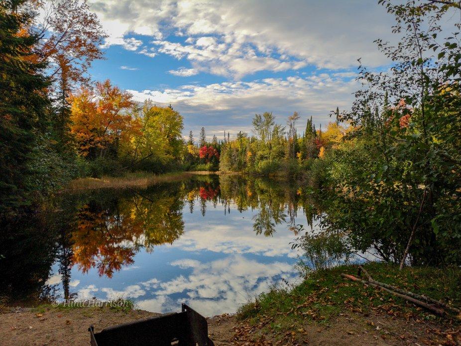 Taken from campsite #76 in Bonnechere Provincial Park. Killaloe, Ontario. October 5, 2018.