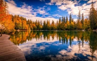 Green lake in Autumn