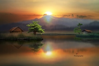 Light on a dream land