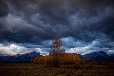 """Storm Front"""