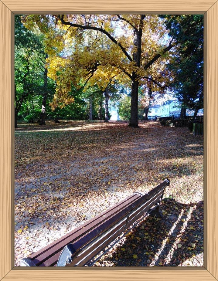 This photo was taken in the City Park in Tienen Belgium #Theo-Herbots-Fotografie