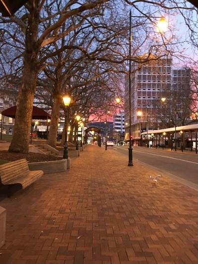 Dunedin Main Street