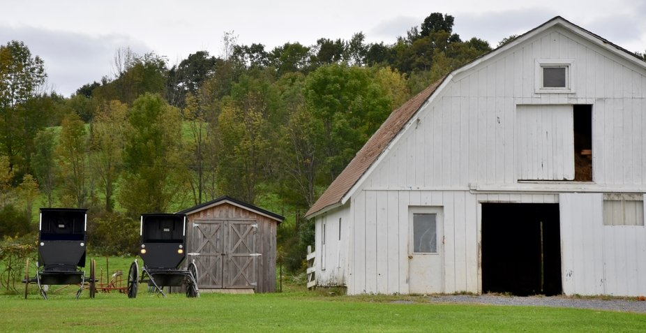 Amish Barn and Buggies
