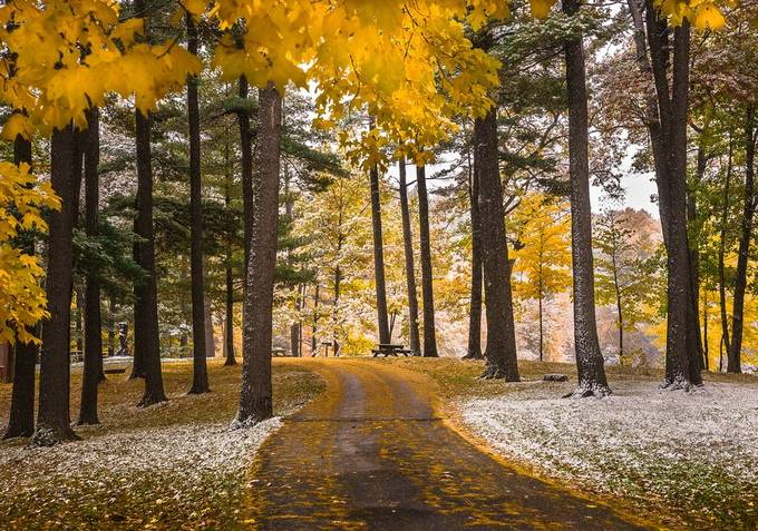 Autumn Snow at the Park by Cbries - Monthly Pro Photo Contest Vol 45