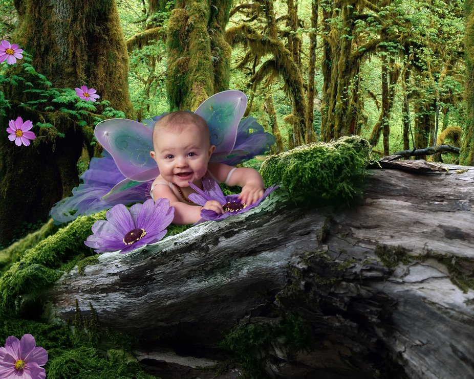 A photo from a baby photo shoot