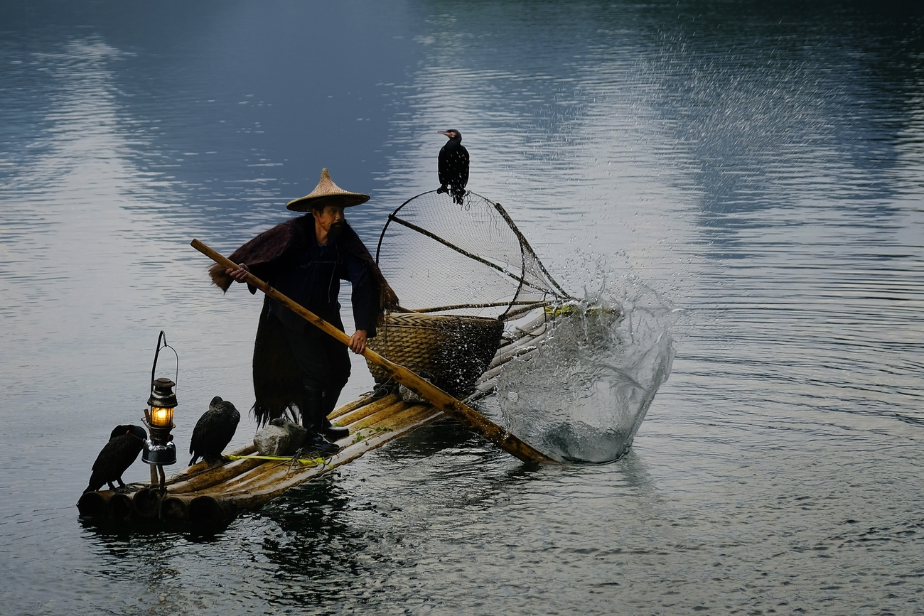 Cormorant fisher man Black Beard at the Li river