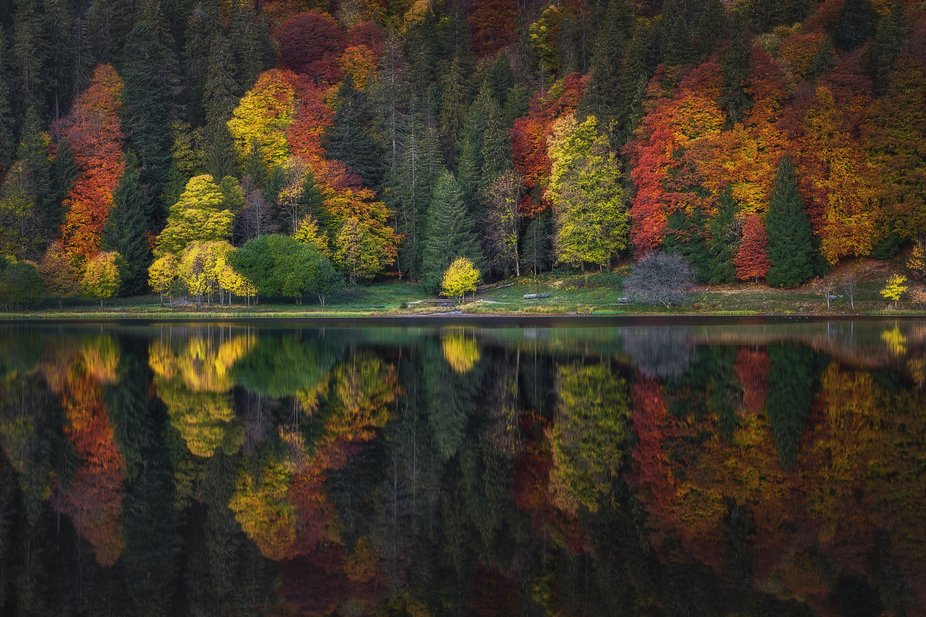 A beautiful autumn morning at a lake with great colours in the Black Forest.