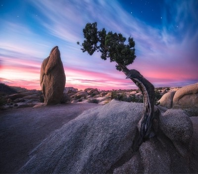 Jumbo Rocks, Joshua Tree National Park, California