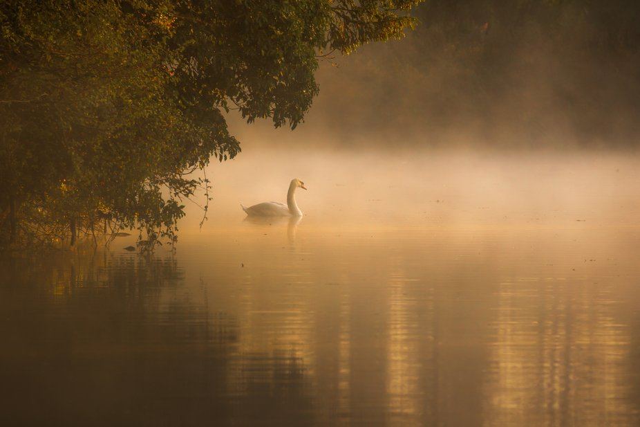 One from this morning whilst out on a commercial shoot. I looked the other way and saw this.