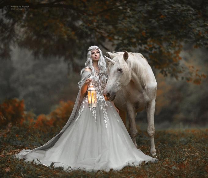 Unicorn... by MarketaNovak - Dreamy Fairytales Photo Contest