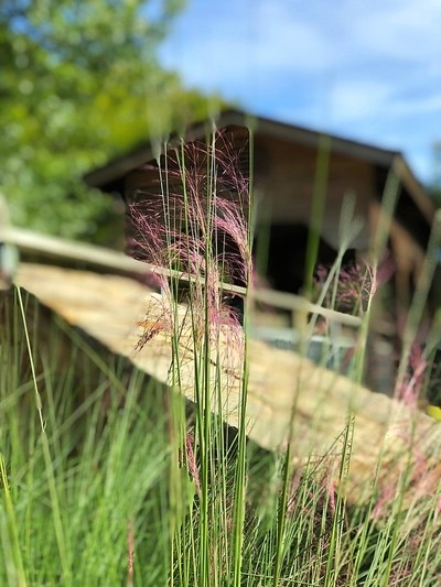 Flower blowing in the wind with covered bridge