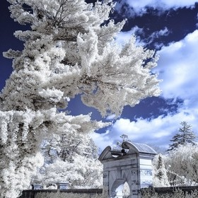 Entrance to the Walled Garden, Old Westbury Gardens  Nikon D70 / 590 nm Infrared
