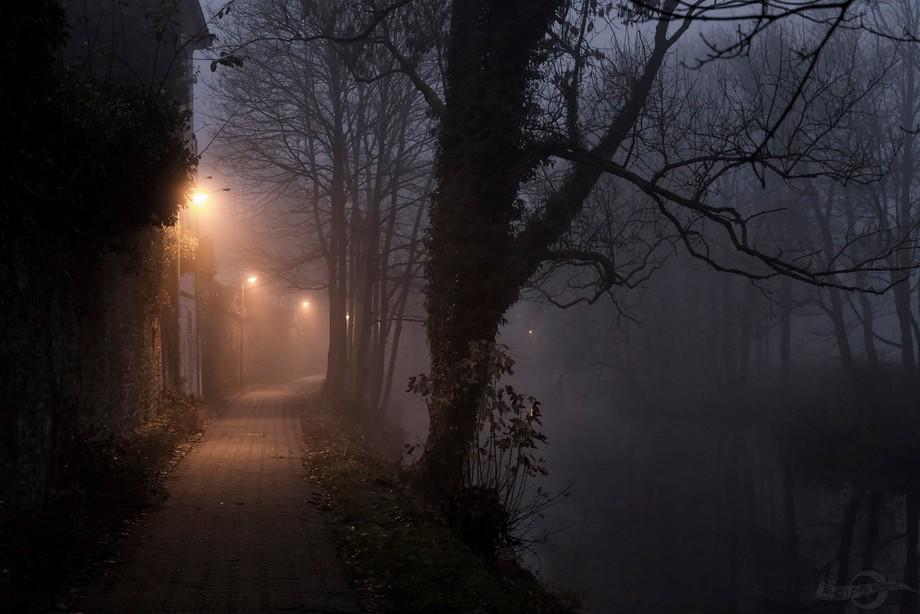 Illuminated walkway on a misty autumn evening.
