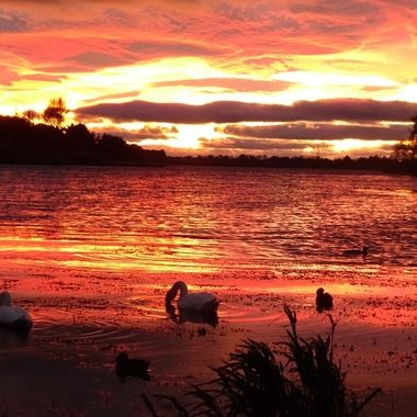 Stunning sunset tonight over my local loch.