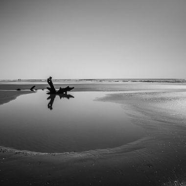 Reflecting on a Tidal Pool