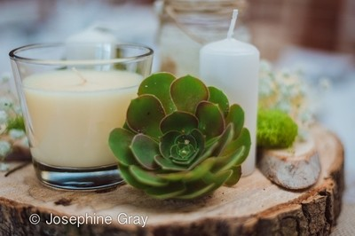 Succulent plant, candles and rustic wedding theme