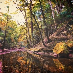 Fall colors reflect off stream in Hocking Hills, Ohio