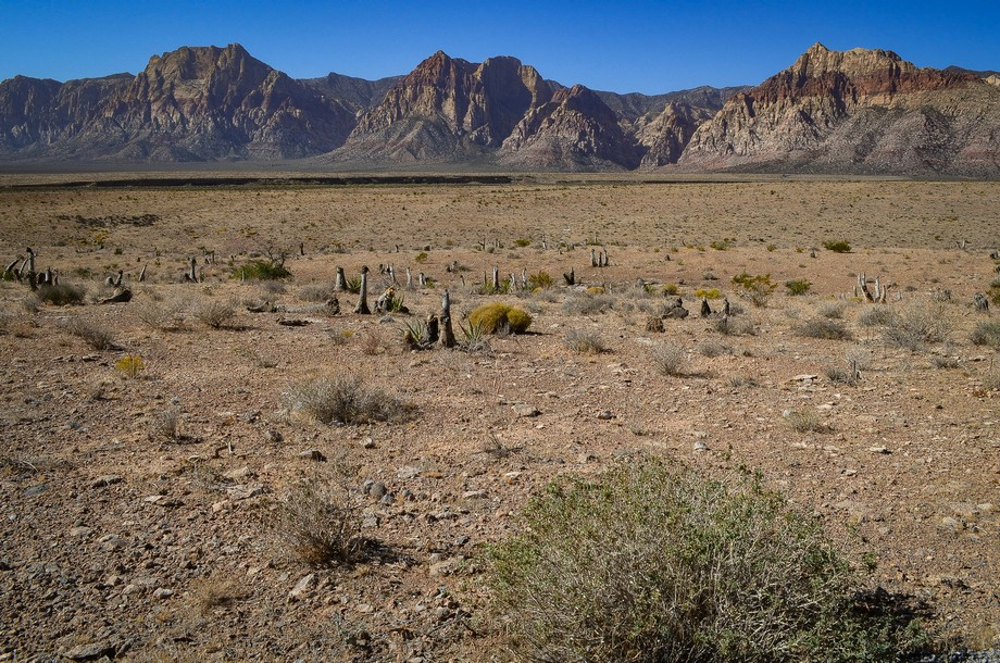 Red Rock Canyon - Las Vegas, NV