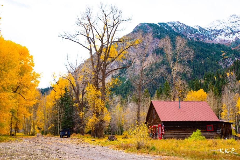 Isolated Cabin