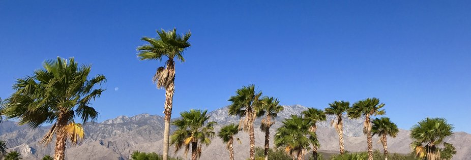 On the beginning of the county-built trail that will eventually extend from Palm Springs to Coach...