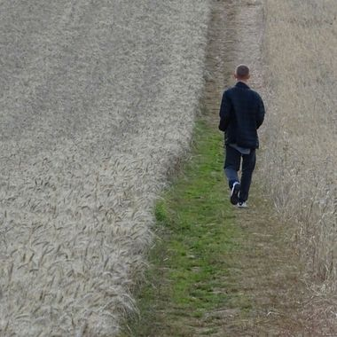 Young man walking through a field of barley