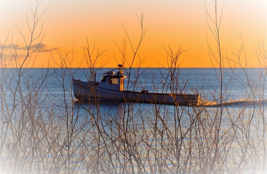 Boat heading out to catch Tuna or Herring