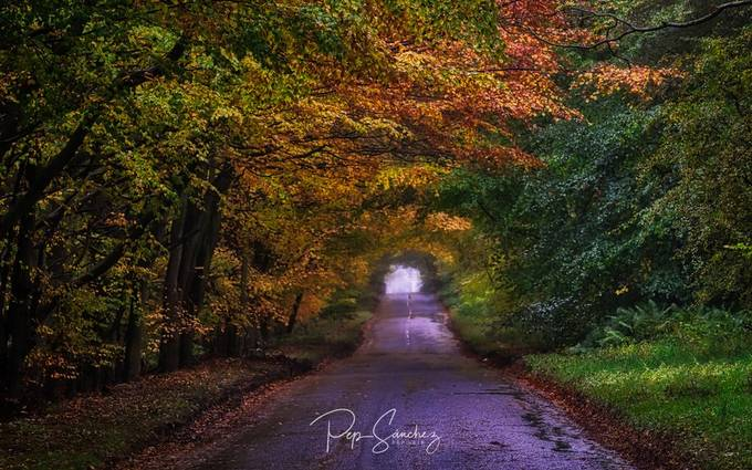 Autumn in the Highlands by pepinair - Straight Roads Photo Contest