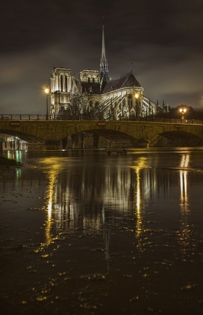 Notre Dame Reflections