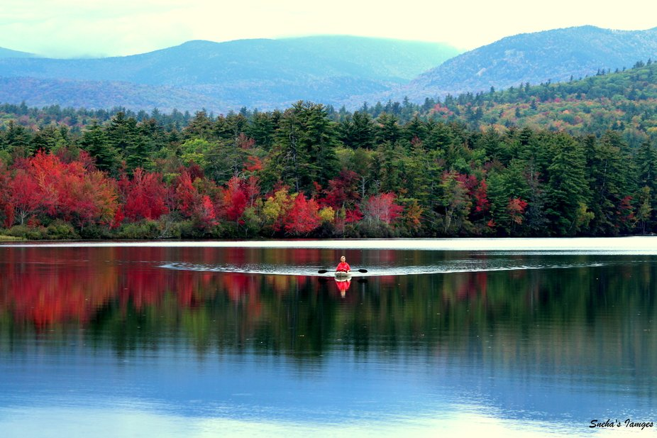 New England area of USA,ie. the East Coast of USA is known for the beautiful fall foliage. This s...