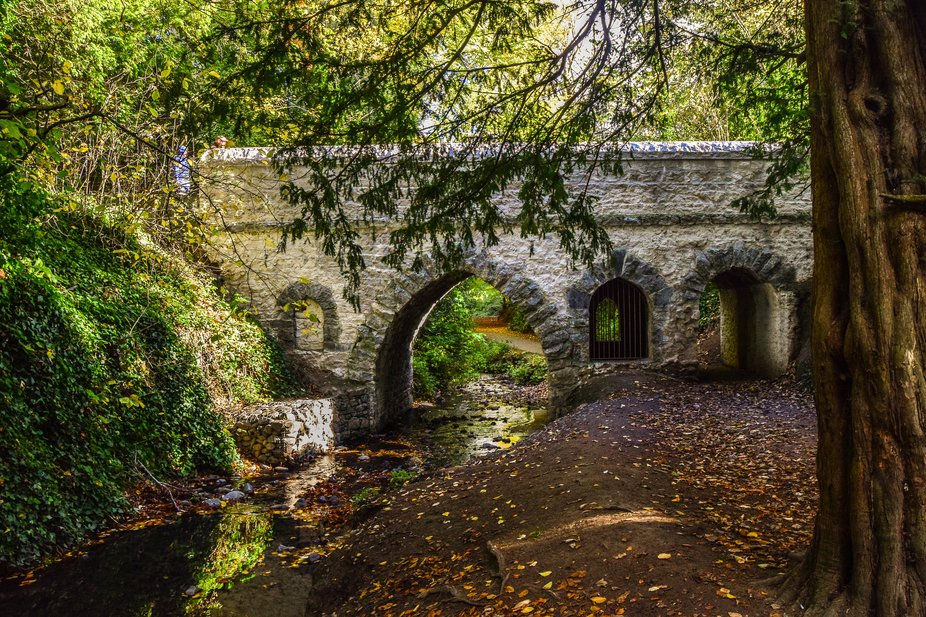 I was in St Annes Park in Raheny, Dublin Ireland and was just walking away from this scene when I...