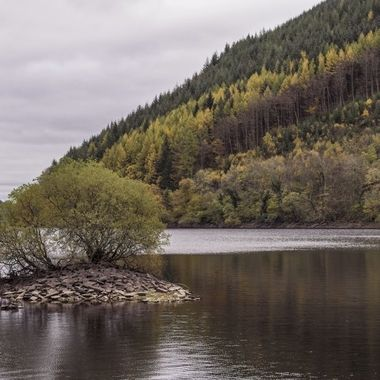 An island in Lake Vyrnwy at its northern end