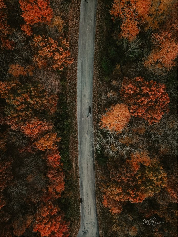The road to fall colors is endless.  by Rosborne4703 - Straight Roads Photo Contest