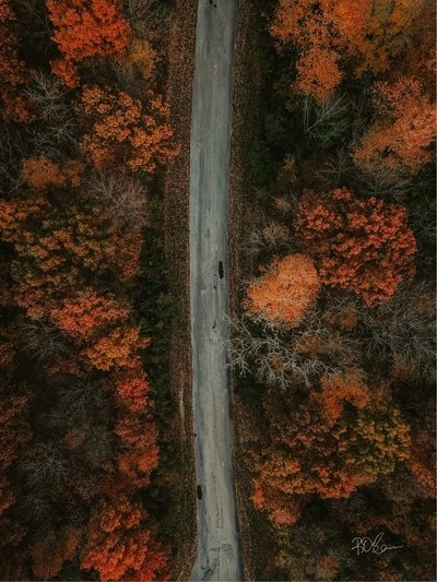 The road to fall colors is endless.