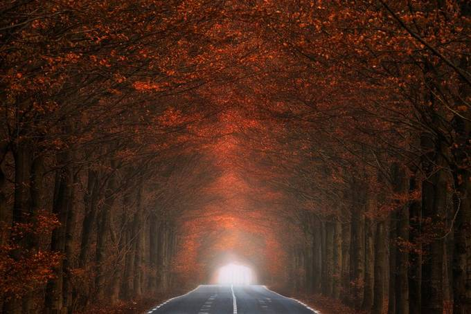Tunnel of fire by Logrenraw - Straight Roads Photo Contest