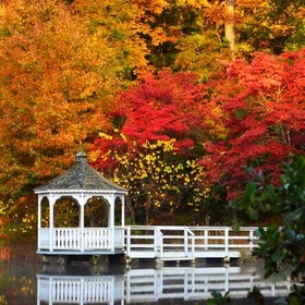 Gazebo in fall color