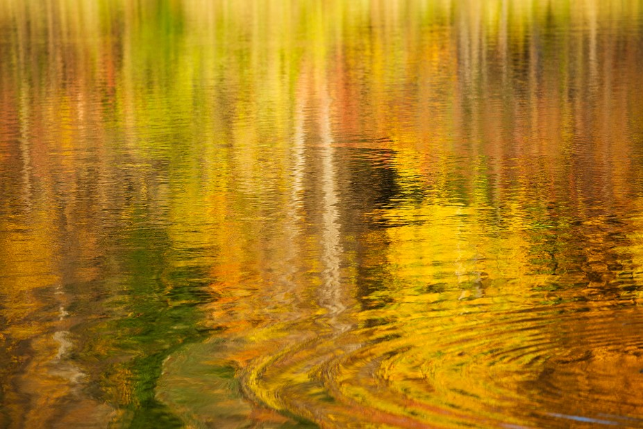 Taken at Beaver Pond in Ottawa, Canada. It was a beautiful fall day and the reflections in the wa...