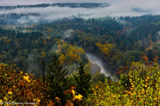 Did not hold much hope for good photos on this dreary day but the low lying clouds with some fall colors was nice