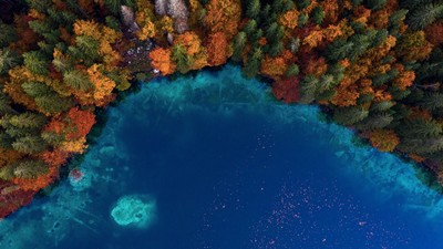 Fall by the lake from above