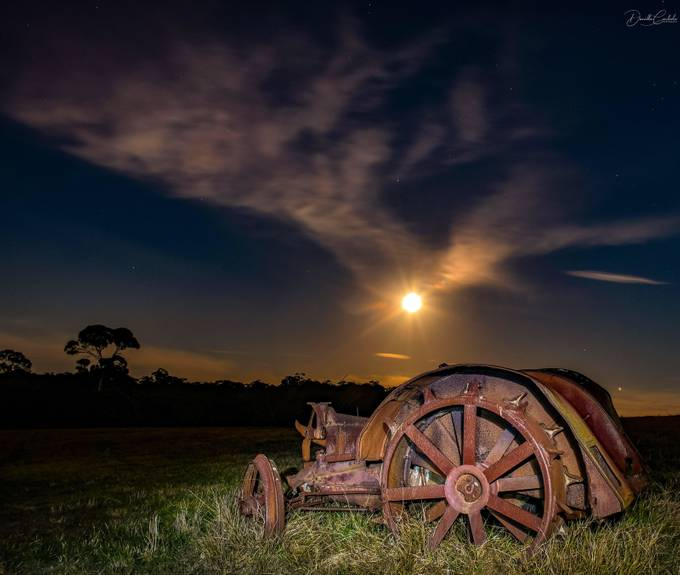 In the paddock at night by daniellecarlisle - Night Wonders Photo Contest