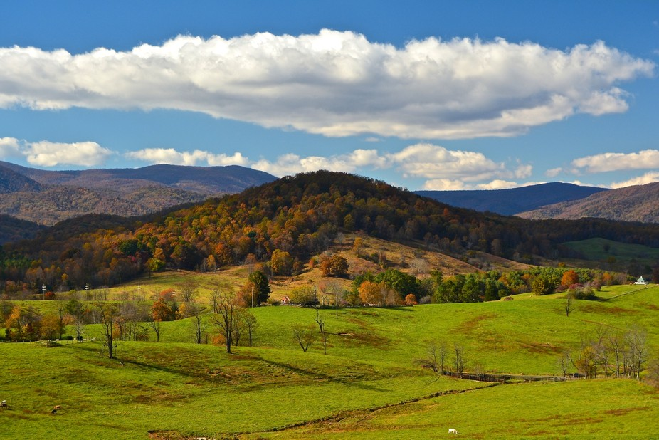 Great light on a crisp fall afternoon for a colorful chiaroscuro capture of the scenic Shenandoah...