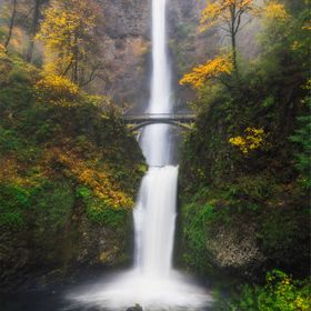 The first time in 3 years I've went to Multnomah Falls despite living only 50 minutes away. I was reminded of how breathtaking this place re...