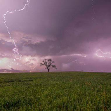 Lightning On Lonely Tree Hill