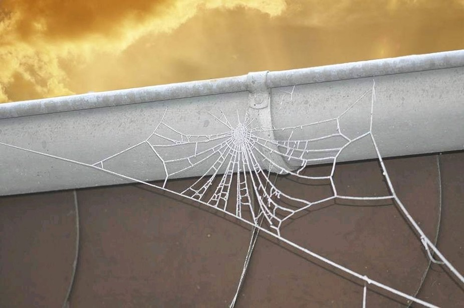 Ein gefrorene Spinnennetz an der Dachrinne