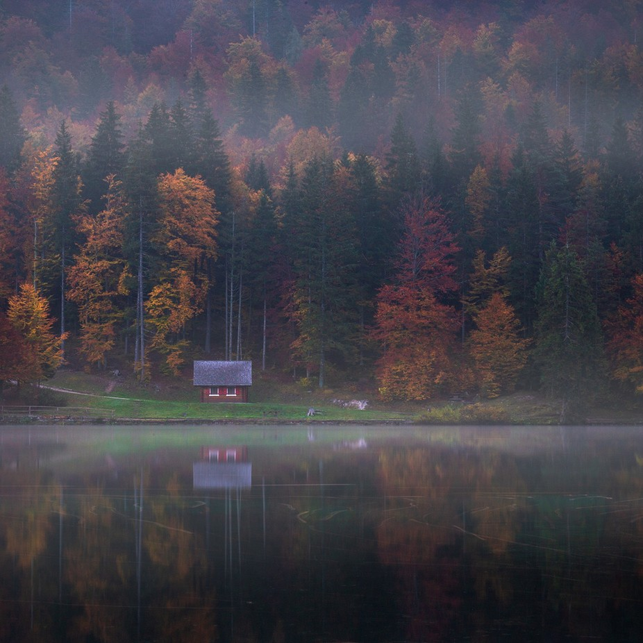The Cabin in the Woods by daniturphoto - Isolated Cabins Photo Contest