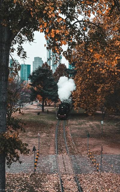 Autumn in Frankfurt a.M.