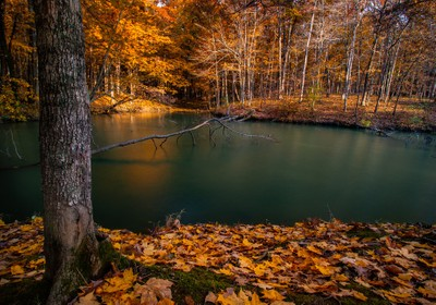Fall Colors by the Water's Edge